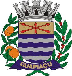 Logo da entidade Prefeitura Municipal de Guapiaçu