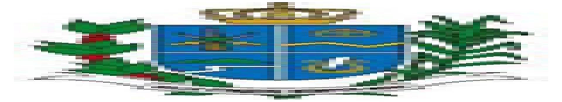 Logo da entidade CÂMARA MUNICIPAL DE SILVEIRAS