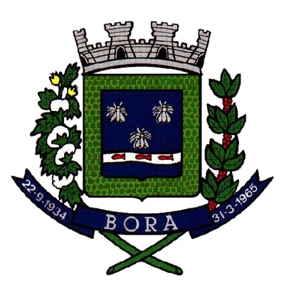 Logo da entidade PREFEITURA MUNICIPAL DE BORÁ