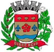 Logo da entidade Prefeitura Municipal de Dirce Reis