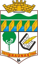 Logo da entidade Prefeitura Municipal de Braúnas