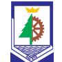 Logo da entidade Prefeitura Municipal de Salete