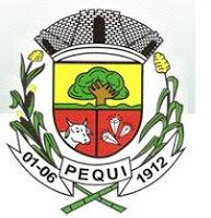 Logo da entidade Prefeitura Municipal de Pequi