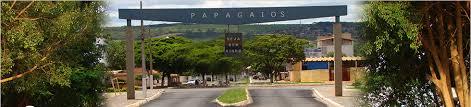 CONHEÇA PAPAGAIOS